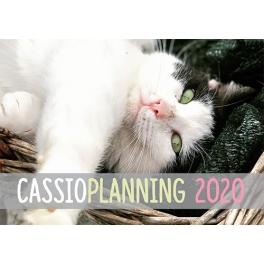CASSIOPLANNING 2020